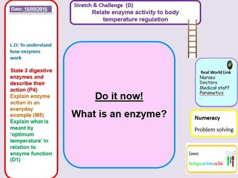 Outstanding enzymes lesson