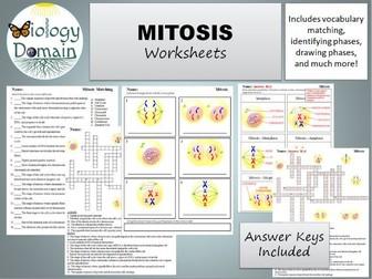 Mitosis Worksheets