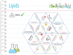 Lipids---Tarsia.pdf