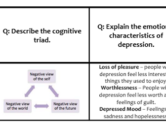 Psychopathology Revision cards