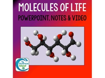 Molecules of Life PowerPoint and Notes