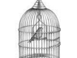 the caged skylark