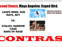 Caged Bird. Maya Angelou. Themes and Structure