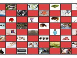 Phonics Consonant Blends sm-sn-sw-sl-pr-st Photo Checkerboard Game