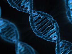 Cells, Cell control, Genetics and Health and Disease x 50 lessons