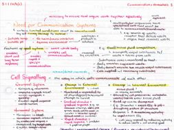 OCR A Level Biology Year 2/A2 Revision Posters