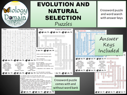 Evolution-and-NS-puzzles.pdf