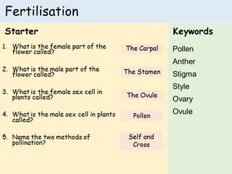 KS3 Plants - Lesson 4 - Fertilisation