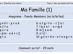 GCSE Vocabulary and Sentence  Level Tasks - Ma Famille - EDITED