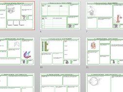 Cambridge CIE IGCSE Biology revision worksheets