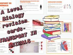 Biology transport in animals revision cards