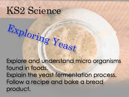 KS 2 Science Exploring yeast