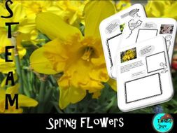 STEAM Spring Flowers - Lapbook, Biomimicry