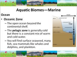 Aquatic-Biomes-PPT.pptx