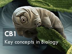 CB1: Key Concepts in Biology Edexcel 9-1 - Whole scheme.