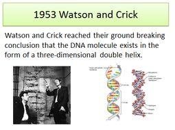 6.1.3 Manipulating Genomes OCR A level Biology (12-14 lessons)