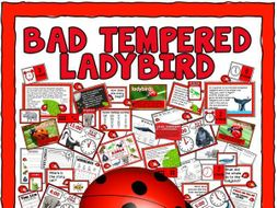 THE BAD TEMPERED LADYBIRD  STORY TEACHING and DISPLAY RESOURCES