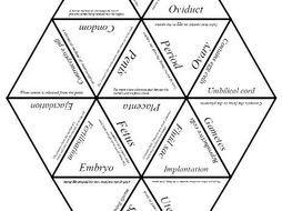 Biology Tarsia Puzzle: Human Reproduction by ansellwill