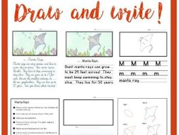 Drawing & Handwriting Course - Animal Alphabet - Literacy Center - Draw & Write