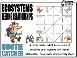 Ecosystems and Feeding Relationships Cootie Catcher
