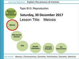 AQA GCSE: B13 Reproduction: L2 Meiosis