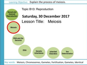Aqa gcse b13 reproduction sequence of lessons biology aqa gcse b13 reproduction l2 meiosis ccuart Images