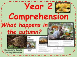 What happens in the autumn? - Comprehension - Year 2