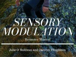 Sensory Modulation Resource Manual Ebook