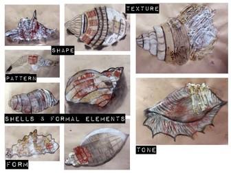 KS3 Art & Design: Mixed Media Shells & Formal Elements