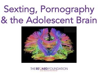 Pornography & the Adolescent Brain