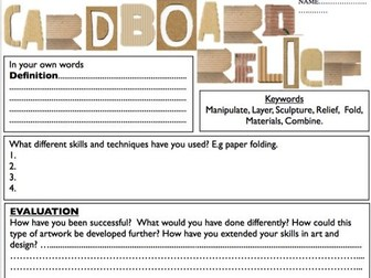 Cardboard Relief Evaluation Sheet