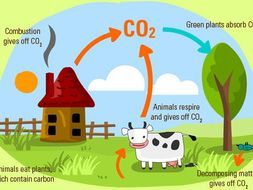 Carbon cycle by heidib82 teaching resources tes carbon cycle ccuart Image collections