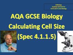 GCSE AQA Biology - Cell Magnification maths skills