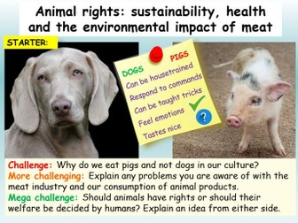 Animal Rights / Sustainability