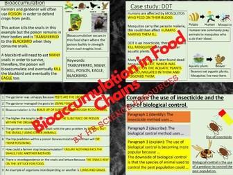 Bioaccumulation in Food Chains