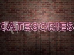 Categories Game - Great for Starters and Plenaries