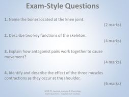AQA GCSE PE (9-1) Anatomy & Physiology Exam Questions with Mark ...