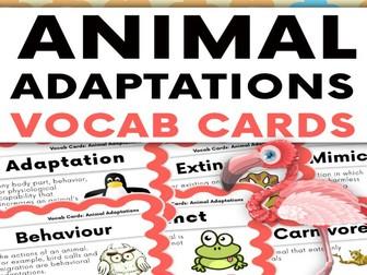 Animal Adaptations Vocabulary Cards