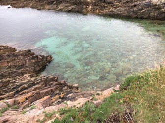 Rock Pools and the Seaside
