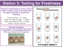 egg coagulationprotein denaturation