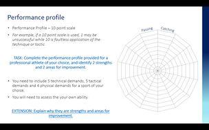 Performance-Profile---Unit-2-template.docx