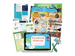 Year 3 plants: build a model flower