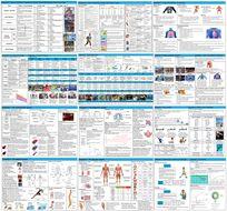 GCSE PE – Edexcel (9-1) – Complete Component 1 - Knowledge Organisers