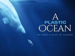 A Plastic Ocean Documentary Worksheet and Answers