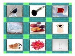 Phonics Consonant Blends bl-cl-fl-gl-pl Photo Card Game