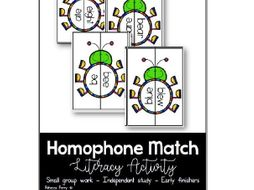 Homophone Match - Literacy Activity - Small Group Activity - Independent Consolidation