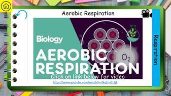 Bioenergetics-AQA-GCSE-Biology-Revision-9-1-Preview-3.jpg