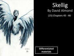 KS3: Skellig (15) Chapters 45 and 46, plus an assessment task