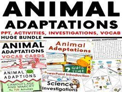 Animal Adaptation Huge Bundle - PowerPoint, Activities, Investigations & Vocab