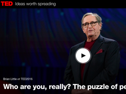 """English as a Foreign Language C1 Level- Personality """"Who are you really?"""" Questions on a TED talk"""